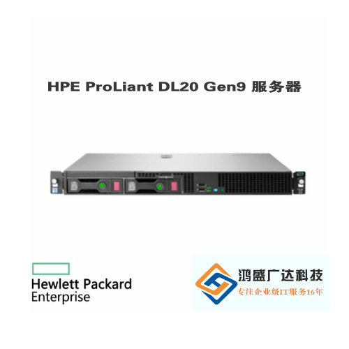 HPE ProLiant DL20 Gen9 服务器